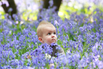 Baby boy say in bluebell woodland